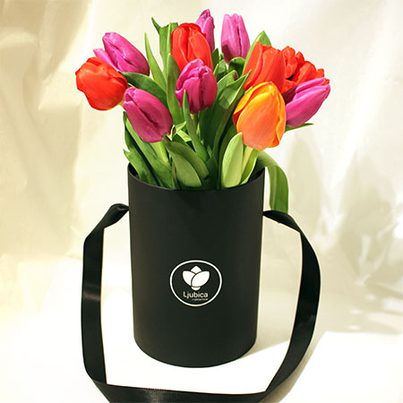 Tulipani flower box C