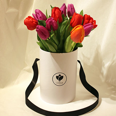 Tulipani flower box B